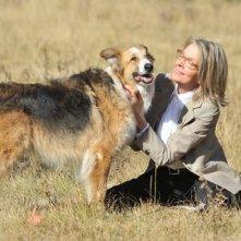 Diane Keaton e il suo cane in Darling Companion