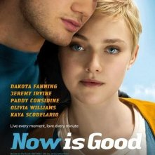 Now Is Good: nuovo poster USA