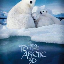 To The Arctic 3D: la locandina del film