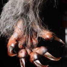 Lobos de Arga: la zampa di un lupo mannaro