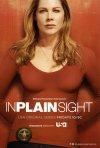 In Plain Sight - Protezione testimoni