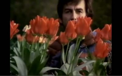 Trailer Italiano - George Harrison: Living in the Material World