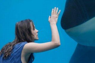 Rust and Bone: Marion Cotillard osserva i pesci in un acquario in una scena del film