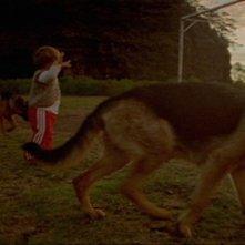Post Tenebras Lux: una fanciullesca immagine tratta dal film diretto da Carlos Reygadas
