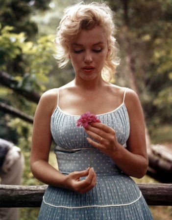 Una splendida immagine di Marilyn Monroe (1926-1962)