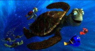 Alla ricerca di Nemo in 3D: Dory e Nemo in mezzo alle tartarughe in una scena del film