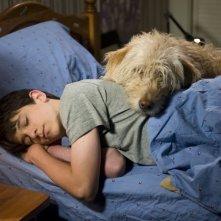 Diario di una schiappa 3 - Vita da cani: Zachary Gordon in una scena del film col suo cane Sweetie