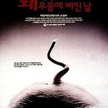 The Day the Pig Fell Into the Well: la locandina del film