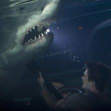 Bait: Xavier Samuel combatte contro uno degli squali assassini in una scena subacquea del film