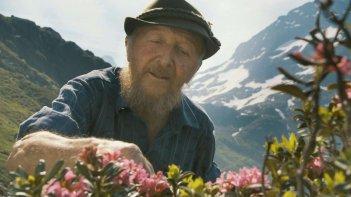 More Than Honey: l'apicoltore Fred Jaggi in una scena del documentario di Markus Imhoof