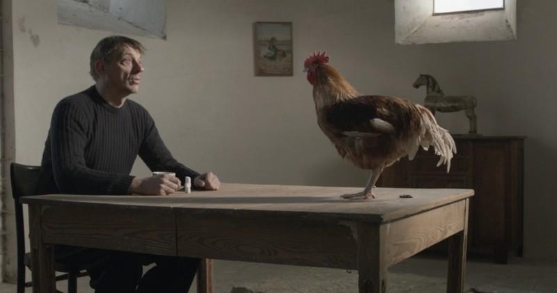 La Cinquieme Saison Sam Louwyck Parla Con Una Gallina In Una Scena Del Film 247570