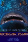 Mediterraneo bollente: la locandina del film