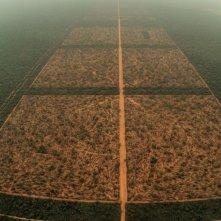 El impenetrable: un'immagine dall'alto del film di Daniele Incalcaterra sulla regione paraguayana del Chaco