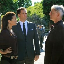NCIS: Cote de Pablo, Michael Weatherly, Mark Harmon e Joe Spano nell'episodio Extreme Prejudice