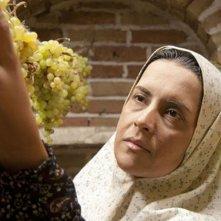The paternal house: Nazanin Farahani in una scena
