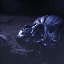 Vitriol: una scena del film diretto da Francesco De Falco