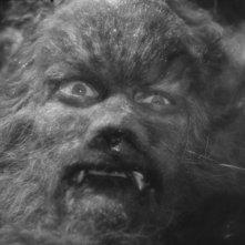 Jean Marais in una scena del film La Bella e la Bestia (1946)