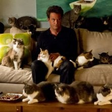 Go On: Matthew Perry nell'episodio He Got Game, She Got Cats