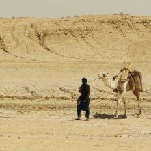 Il sole dentro: un beduino nel deserto