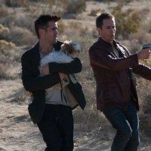 7 psicopatici: Colin Farrell, Sam Rockwell insieme al piccolo shih-tzu Bonny nel deserto