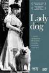 La signora dal cagnolino: la locandina del film