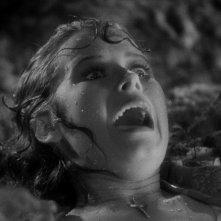 Anne Darling spaventata in una scena del film La moglie di Frankenstein