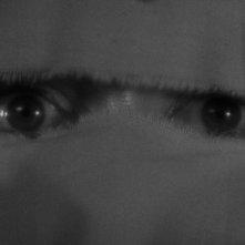 La moglie di Frankenstein: gli occhi di Elsa Lanchester in una scena del film