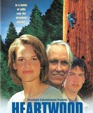 Il cuore della foresta: la locandina del film