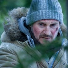 Liam Neeson in un primo piano tratto da The Grey
