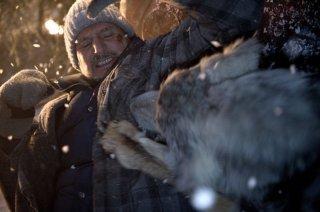 Liam Neeson lotta con un lupo in una scena action di The Grey
