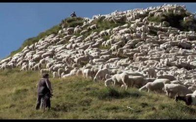 Trailer - L'ultimo pastore