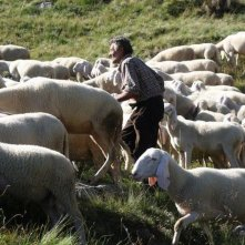L'ultimo pastore: una scena del film