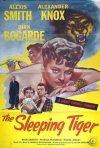 La tigre nell'ombra: la locandina del film