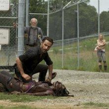 The Walking Dead: Andrew Lincoln, Danai Gurira, Scott Wilson, Chandler Riggs ed Emily Kinney in una scena dell'episodio Infiltrati