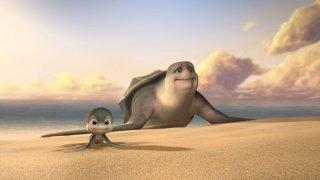 Sammy 2 - La grande fuga: Sammy in una scena del film sulla spiaggia