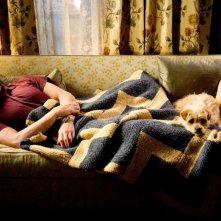 Steve Carell in una scena di Cercasi amore per la fine del mondo
