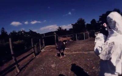Trailer - Fukushame - The lost Japan