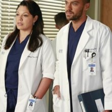 Grey's Anatomy: Sara Ramirez, Jesse Williams nell'episodio Run, Baby, Run, della nona stagione