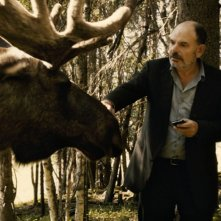 Jean-Pierre Darroussin alle prese con un alce in Rendez-vous à Kiruna