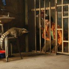 Jamel Debbouze e Alain Chabat in Marsupilami in compagnia di un misterioso animale