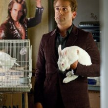 Steve Carell, l'incredibile Burt Wonderstone con un coniglio bianco
