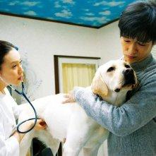 7 Days of Himawari & Her Puppies: una sequenza del film.