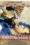 Sette winchester per un massacro: la locandina del film