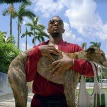 Anthony Mackie in Pain & Gain - muscoli e denaro