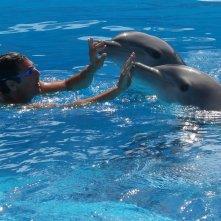 Come un delfino 2: Raoul Bova con i delfini in una scena della fiction