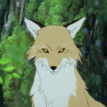 Wolf Children: il primo piano di un lupo