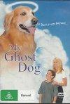 Il mio cane fantasma