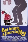 Son tornate a fiorire le rose: la locandina del film