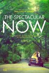 The Spectacular Now: la locandina del film