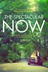 The Spectacular Now: la locandina del film